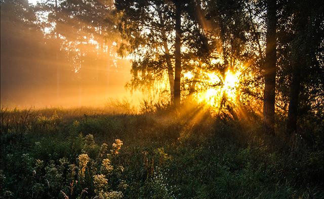 Режим дня при духовном самосовершенствовании