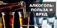 Польза и вред алкоголя для организма человека